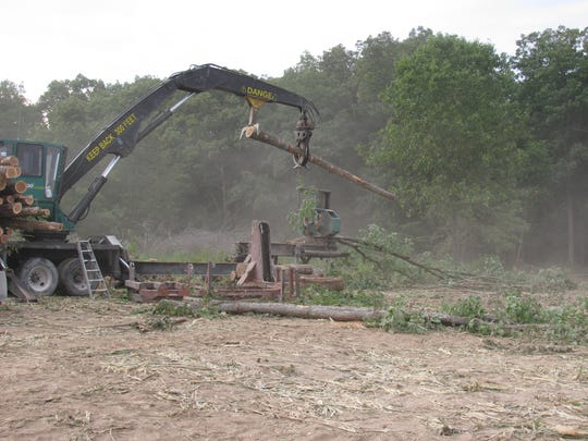 The storm cleanup resulted in 10,000 truckloads of logs being removed from the mark Twain National Forest.