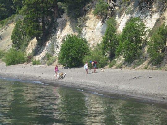 Dogs play along the beach at Skylandia Park and Beach