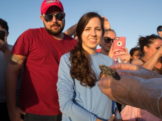 Spectators look at a kemp's ridley sea turtle hatchling