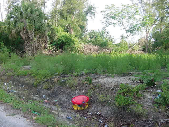 A child's toy snapped by a Florida Dept. of Environmental