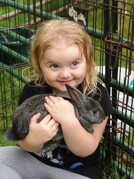 In this 2015 file photo, the baby rabbits received a lot of love from Sophia Street of Livonia at the first weekend of the Livonia Farmers Market held each Saturday at Wilson Barn.