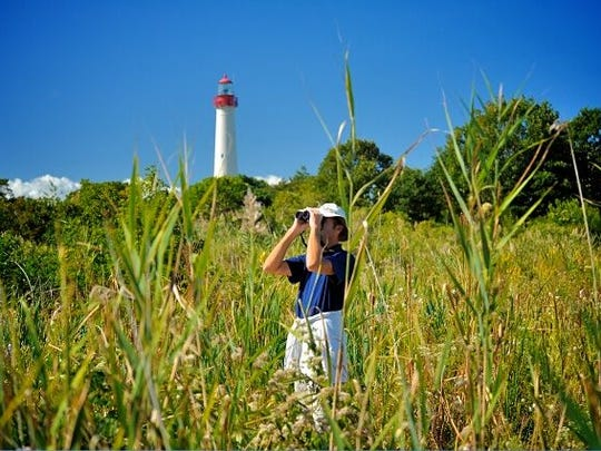 Birder with Cape May Lighthouse