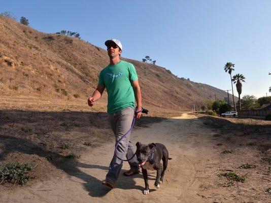 Ventura Avenue hillside