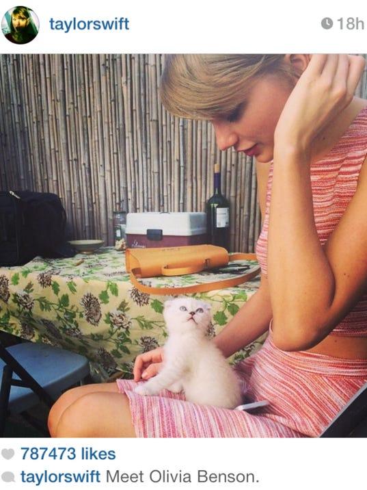 Taylor Swift Instagram.jpg