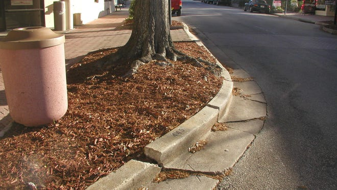 Cracks along this curb were caused by tree roots.