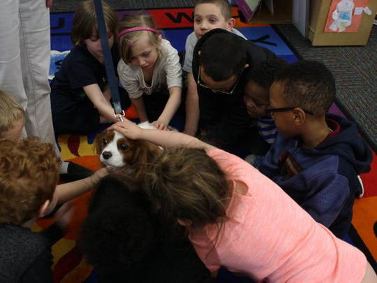Students in Raquel Nayor's kindergarten class pet the