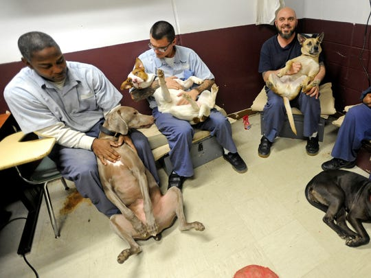 Inmates, from left, Dwight Richards, Shawn Markwell, Thomas and Antoine Gray, at the Ross Correctional Institution play with dogs Wednesday as part of a prison program that allows specially trained inmates to care for and train dogs from the Ross County Humane Society. The group also provides a doggy daycare program for dogs owned by members of the prison staff.