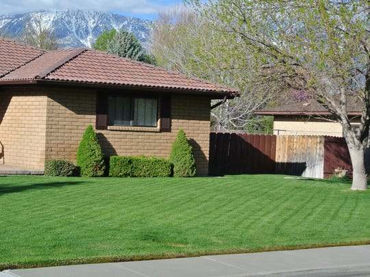 For a quick green-up in spring, wait for cool fall temperatures to fertilize lawns.
