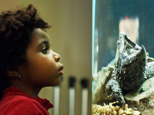 Liberty Science Center aims to make learning about technology and science fun.