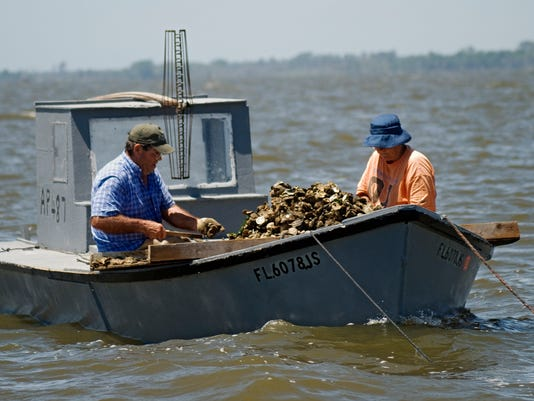 636251800907457877-zapala-sorting-oysters-in-Apalachicola-Bay-2.jpg