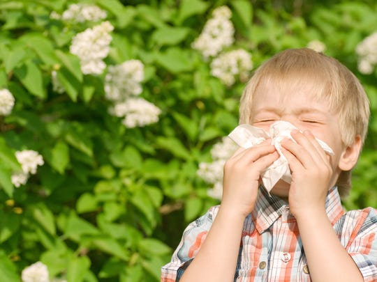 Nasal congestion and postnasal drainage is a common symptom of allegeries.
