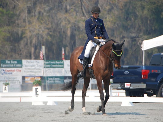 Nilson Moreira da Silva rides Lady Colina during dressage Friday at Red Hills Horse Trials.