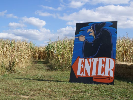 The corn maze at Etsch Farms.