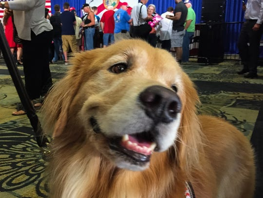 Mr.Barkey, a support dog for Reggie Correll of Merritt Island.