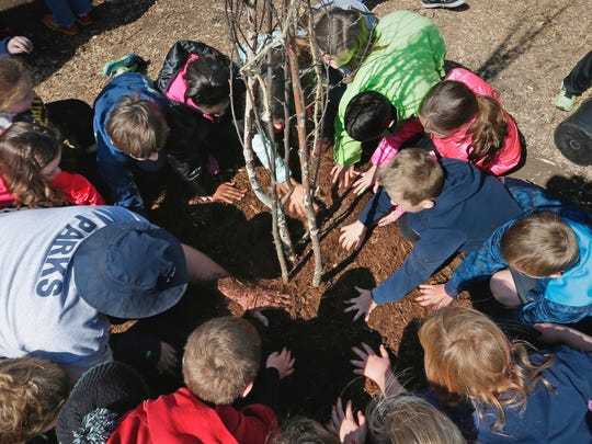 Students help plant trees at Boerner Botanical Gardens