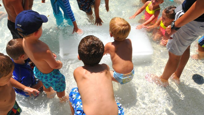 Want to beat the summer heat? The Brevard Zoo offers an Arctic Blast every Tuesday for the rest of July at 11:30 and 1 p.m., dropping 300 pound blocks of ice into the Indian River Play Lagoon in the Paws On area of the zoo.