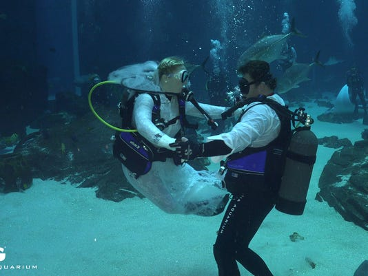 Couple Weds Under Water In Aquarium With Whale Sharks