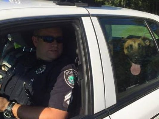 Newport News policeman helps dog after car accident