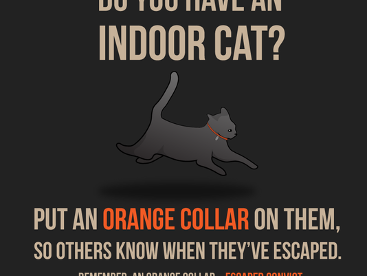 635845863319609992-kitty-convict.png