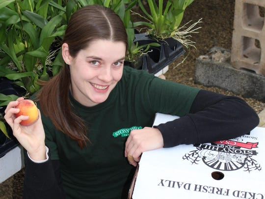 Kristi Ronyack, manager of the Community Supported Agriculture (CSA) program at Stony Hill Farms, Chester.