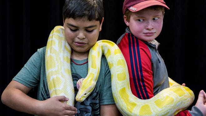 Christopher Hellenthal, 10, (left), and Luke Ellis, 12, keep a lose eye on Bama, a 12-foot-long snake they got to hold Sunday at Repticon Memphis inside of the Landers Center in Southaven. Repticon Memphis is a reptile event featuring vendors offering reptile pets, supplies, feeders, cages, and merchandise.