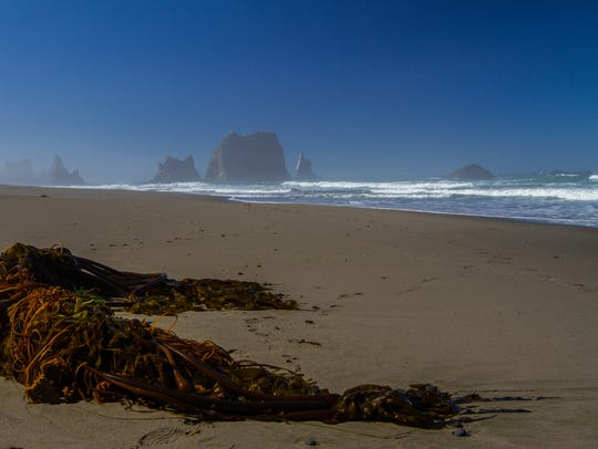 China Beach on the Oregon Coast.
