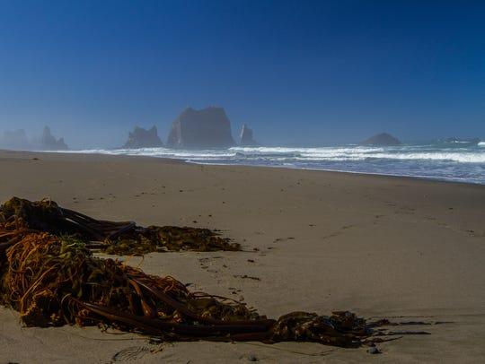 China Beach on the Oregon Coast.