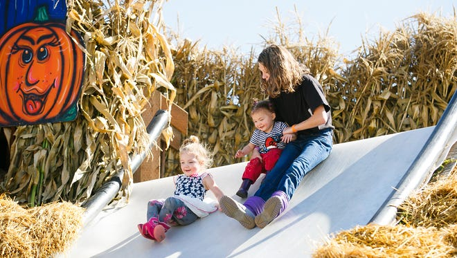 Isabella (from right), Penelope and Hazel MacPherson take to the slides at Bauman's Harvest Festival in Gervais.