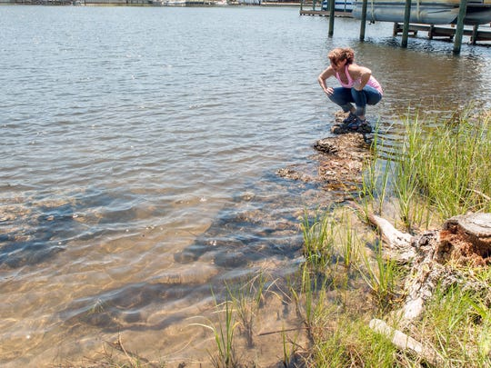Destin resident Jennifer McPeak crouches on sacks of oyster shells used to build a living shoreline along the edge of her yard.