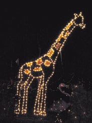 Holiday Light Spectacular at the Essex County Turtle