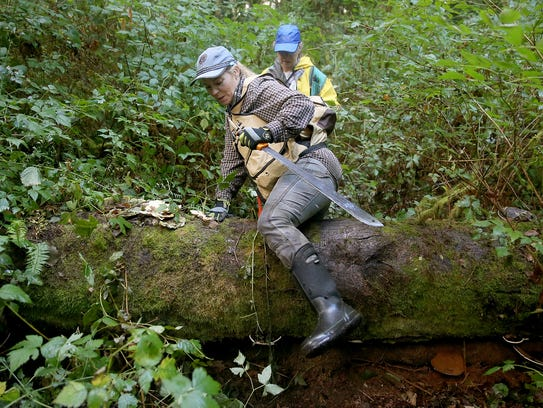 Wetlands biologist Robbyn Myers steps over a fallen
