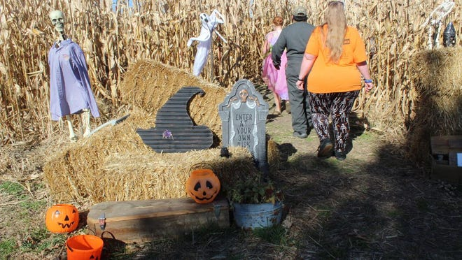 The Corn maze at Horn Field Campus in Macomb ended its three weekend run on Oct. 31, Halloween. The coronavirus pandemic prompted changes to the format, which included making advance reservations to keep to social distancing guidelines.