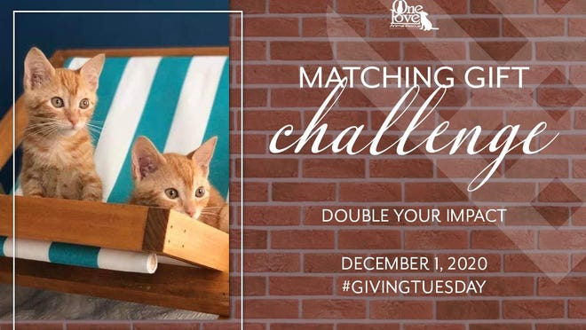 One Love Animal Rescue matching funds event Dec. 1.