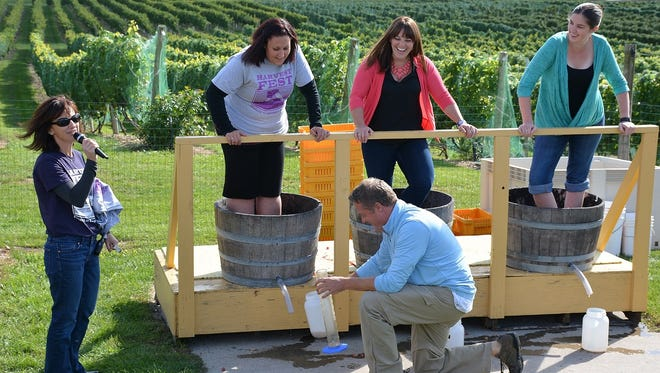 A traditional grape stomp pits wine lover against wine lover to see who can get the most juice out of their barrel during Saturday's Harvest Fest at Parallel 44 Vineyard & Winery in Stangelville.