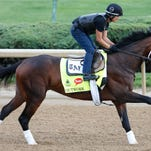 Outwork, trained by Todd Pletcher, jogs across the Churchill Downs track on April 26.