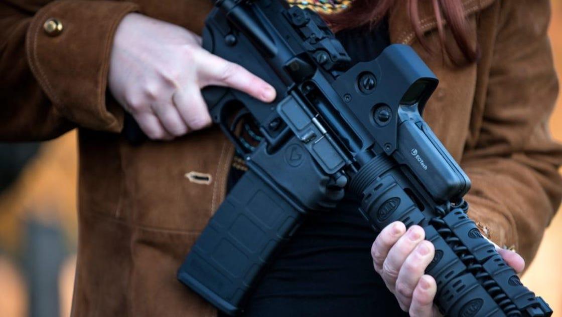 argument in favor of gun control essay