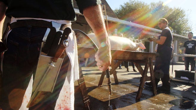 Chef Toby Rodriguez holds a water hose as he and other culinary experts prepare a pig to be butchered during during the second annual Acadiana Thanksgiving le Boucherie in 2014 at Vermilionville. Steam from boiling water rises from a pig's hooves as it is shaved and prepared for butchering as The705 Young Leaders and Lafayette Convention and Visitors Commission host the second annual Acadiana Thanksgiving le Boucherie led by Toby Rodriguez of Lache Pas Boucherie et Cuisine in 2014, at Vermilionville. Vermilionville holds a free cochon du lait Nov. 20.