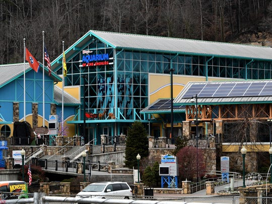Ripley's Aquarium of the Smokies is in downtown Gatlinburg.