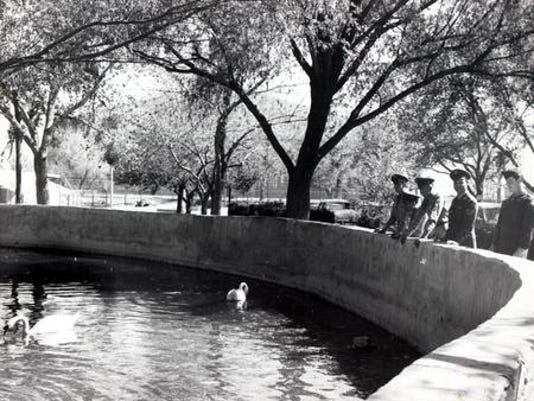 04/22/1951 Watching the swans in Washington Park, are, from left, Sgt. Stephen Leperi, Hazelton, Pa; PFC. Paul Pritchard, Long Beach, Calif, Cpl. Robert Meek, Fort Worth; S/SGT James McNair, Abilene, Texas, ans Sgt. Francis McConnel, Claire, Mich.
