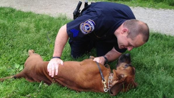 Indianapolis Metropolitan Police Department Sgt. Bill Carter will be honored at the Indiana Pacers game on Dec. 16, 2013, for his work with his personal bloodhound, Grace, who is certified to track and find lost people.