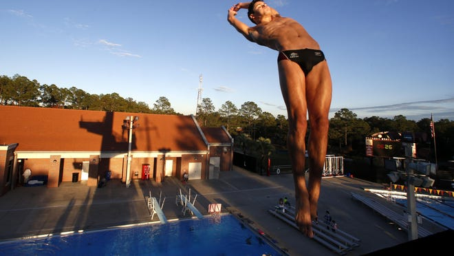 Chiles senior Chase Lane won three consecutive state titles and three All-Big Bend Diver of the Year awards.