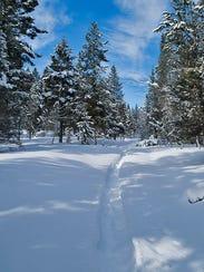 Richard Layne made tracks through deep snow in the