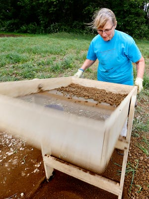 Experienced digger and volunteer Diane Rice, of Mount Joy in Lancaster County, sifts through dirt during a Friends of Camp Security archaeological dig on the undeveloped site of the Revolutionary War prison camp in Springettsbury Township, Wednesday, June 8, 2016. Dawn J. Sagert photo