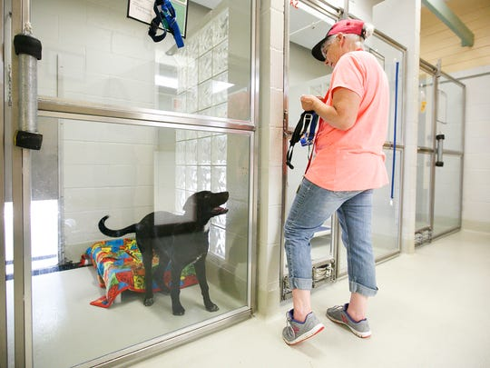The Marion County Dog Shelter public hours will be extending beginning March 10.