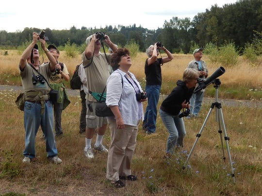 Participants check out the birds during one of the monthly outings at Minto-Brown Park sponsored by Salem Audubon Society.