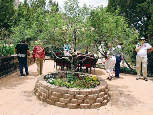 Visitors stroll through the back garden of one of homes on the 24 Club´s home tour in the Mimbres Valley on Sunday afternoon. Funds raised provide two annual scholarships for Western New Mexico University women students. Mary Alice Murphy - Sun-News