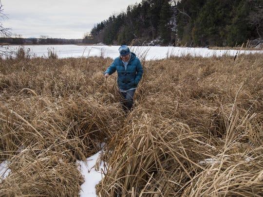 Alicia Daniel, Burlington's naturalist, looks for animal tracks near the Donahue Sea Caves in Burlington in late January.