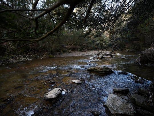 Walk along Otter Creek on the Mason-Dixon Trail.