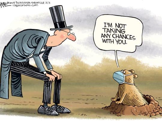 Groundhog protections