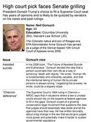 Graphic shows profile information for Supreme Court nominee and selected opinions.